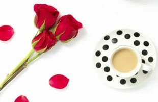 3 roses and petals with a cup of tea
