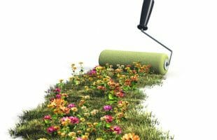 paintbrush and carpet of flowers how to save for a vacation