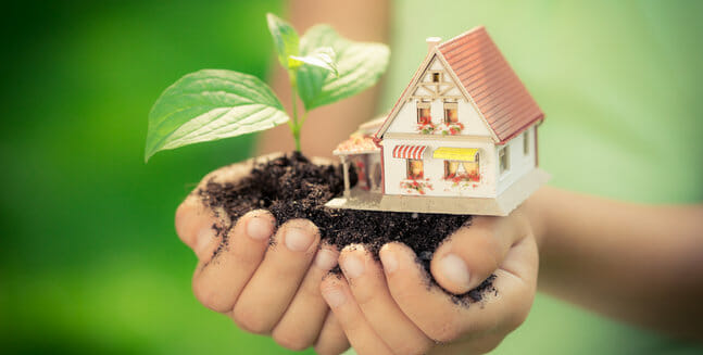 hands holding tree and house