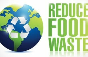 picture of the earth and how to reduce food waste wording